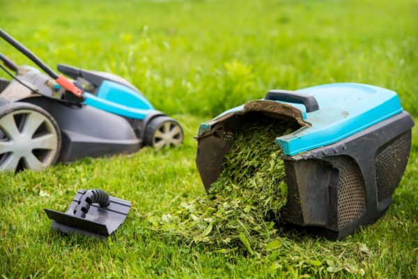 mulching vs bagging grass clippings