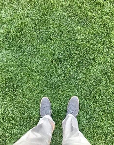 standing on thick lawn